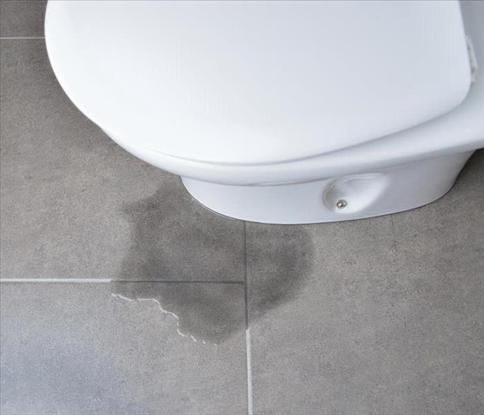 Water Damage A Step by Step Guide on What to Expect With a Toilet Replacement